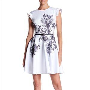 Ted baker Yee dress size 0 xsmall aline dress